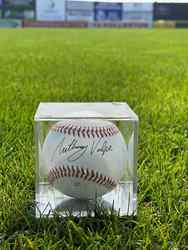 Photo of Anthony Volpe Signed Baseball