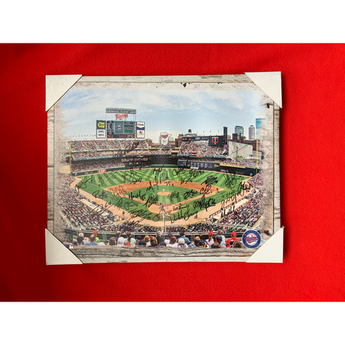 Photo of 2019 Twins Favorite Things Auction: Autographed Stadium View Canvas