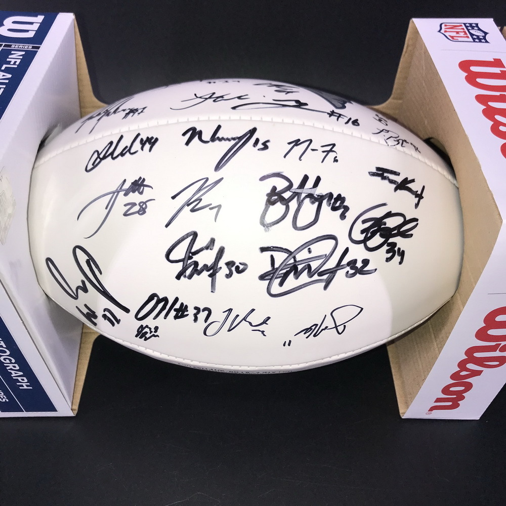 Patriots - Panel Ball with Patriots Logo Signed by Julian Edelman, Bryan Hoyer and more