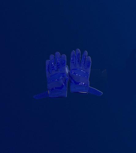 Photo of DeSean Jackson Used Practice Gloves