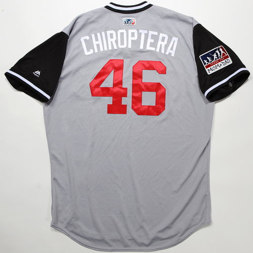 "Photo of Greg ""Chiroptera"" Sparks Chicago White Sox Game-Used 2018 Players' Weekend Jersey"