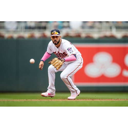 Photo of 2019 Twins Favorite Things Auction: Marwin Gonzalez Meet and Greet following Batting Practice