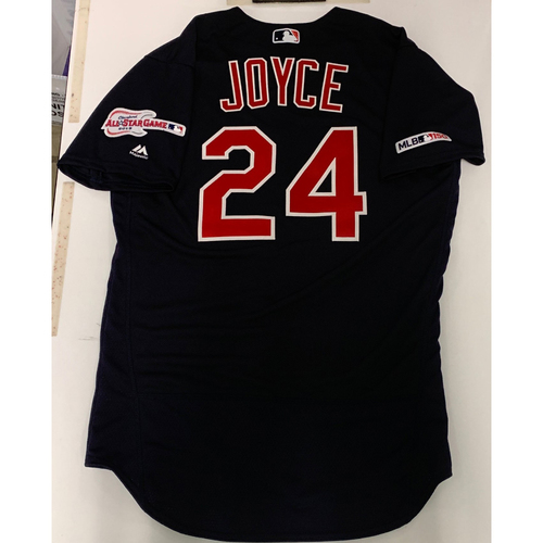 Photo of Matt Joyce Team Issued 2019 Alternate Road Jersey