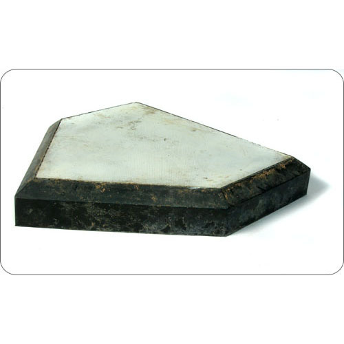 New York Yankees 2010 Spring Training Game-Used  Home Plate