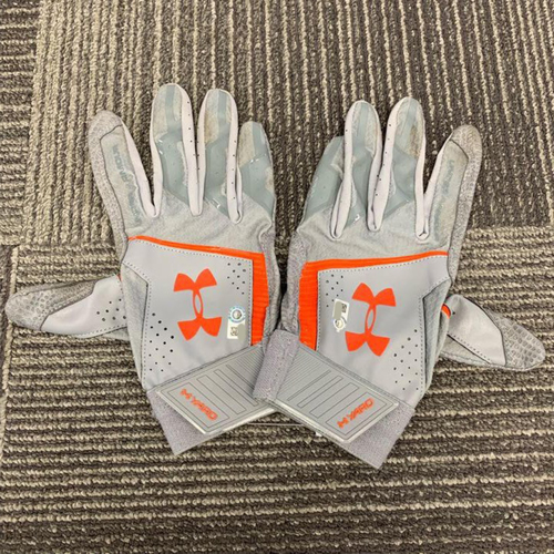 Photo of End of Year Auction - Team Issued Batting Gloves (PAIR) -  #28 Buster Posey
