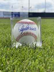 Photo of Lance Parrish Signed Baseball