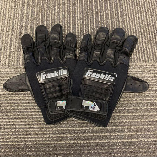 Photo of End of Year Auction - Team Issued Batting Gloves (PAIR) - #48 Pablo Sandoval