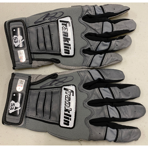 Photo of 2020 Cyber Monday Sale - #53 Austin Slater Team Issued Autographed Gray Franklin Batting Gloves