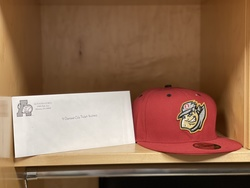 Photo of Altoona Curve Package