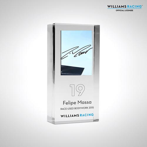 Photo of Felipe Massa 2015 Bodywork in acrylic - Williams F1