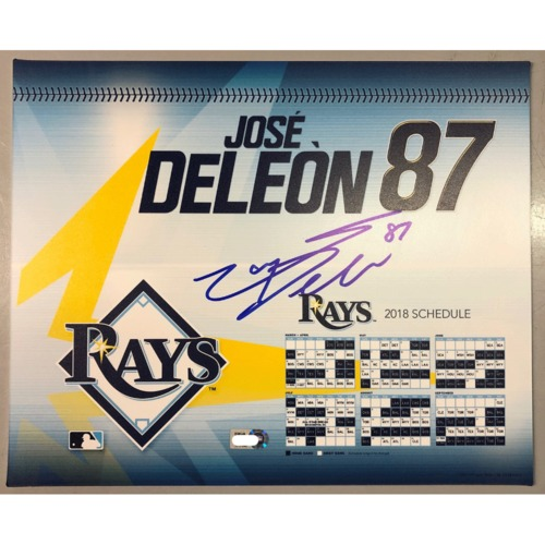 Photo of Team-Issued Autographed Locker Tag: Jose De Leon