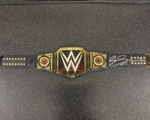 Make sure this fits by entering your model number.; Now kids can take home the excitement of the WWE and its ultimate honor -- the Championship! The leather-like belt features authentic styling and sleek metallic medallions like the pros.