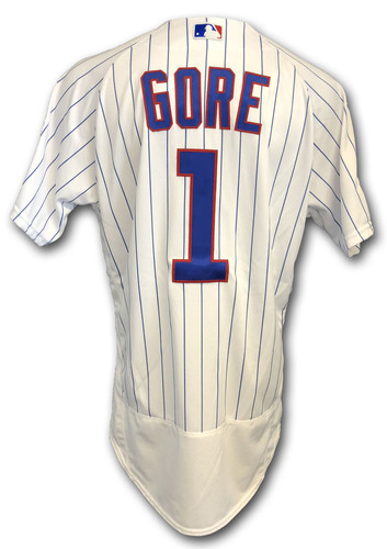Photo of Terrance Gore Team Issued Jersey -- 2018 Postseason Wild Card