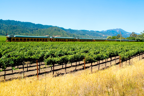 Clickable image to visit Napa Valley Wine Train—Murder Mystery Dinner for Two