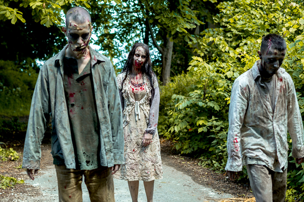 Clickable image to visit Walking Dead Private Film Locations Tour
