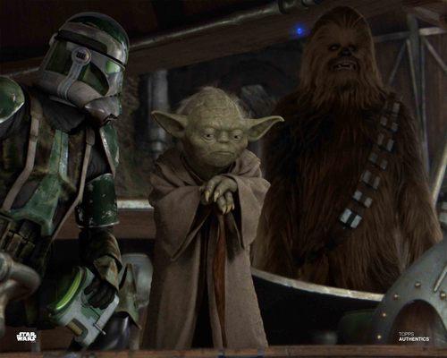 Yoda and Chewbacca
