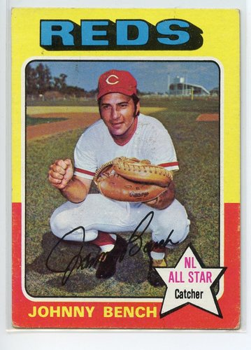 Photo of 1975 Topps #260 Johnny Bench