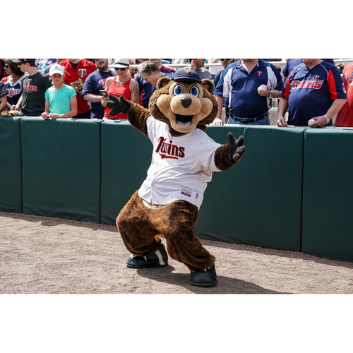 Photo of T.C. Bear Birthday Package