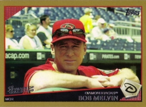 Photo of 2009 Topps Gold Border #384 Bob Melvin MG