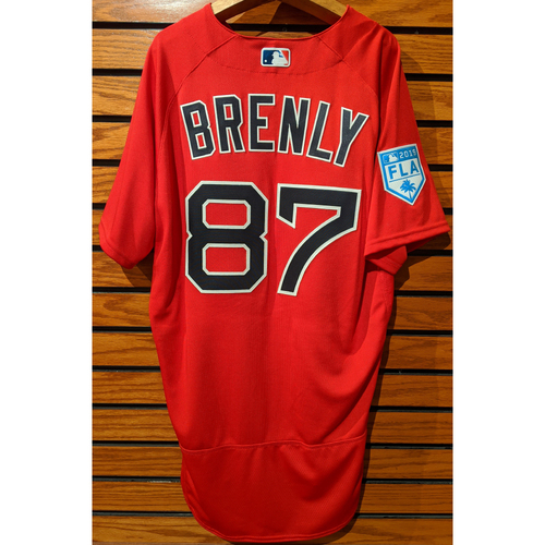 Photo of Michael Brenly #87 2019 Red Spring Training Team Issued Jersey