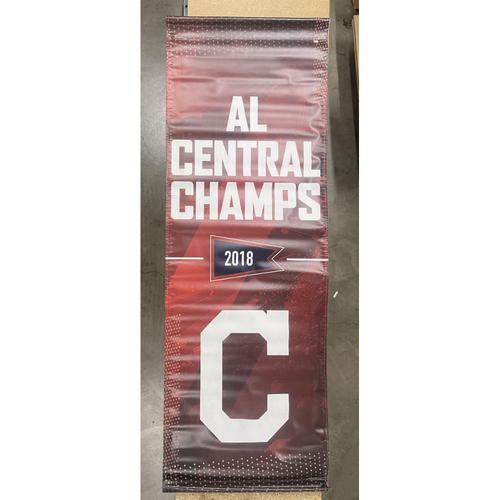 Photo of Team Issued Street Banner - 2018 AL Central Division Champs