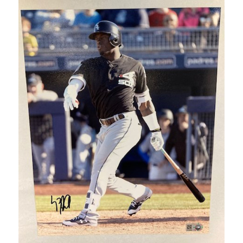 Photo of Luis Robert Autographed Photo