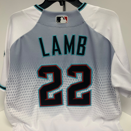 Photo of 2019 Team Issued Jake Lamb #22 Jersey