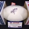 Dolphins - William Hayes Signed Panel Ball