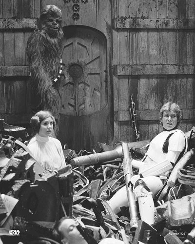 Han Solo, Princess Leia Organa, and Chewbacca