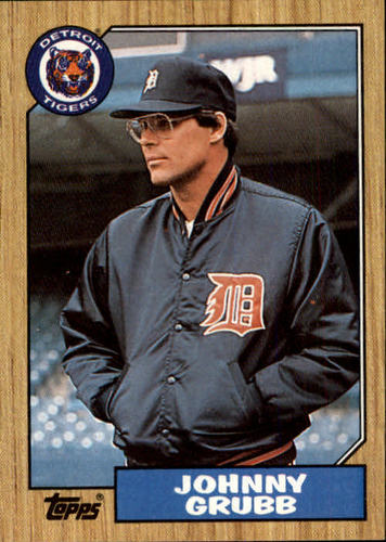 Photo of 1987 Topps #384 Johnny Grubb