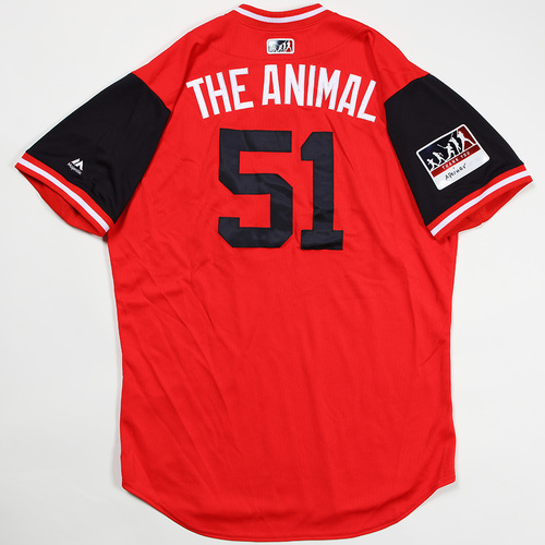 "Photo of Wander ""The Animal"" Suero Washington Nationals Game-Used Jersey 2018 Players' Weekend Jersey"