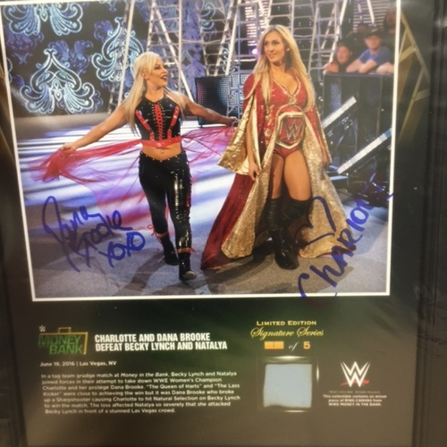Charlotte & Dana Brooke Money In The Bank 2016 15 x 17 Framed Ring Canvas Photo Collage
