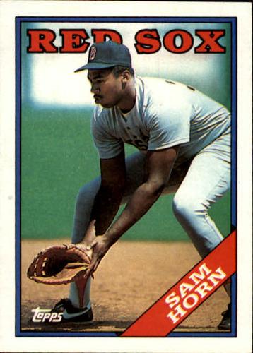 Photo of 1988 Topps #377 Sam Horn RC