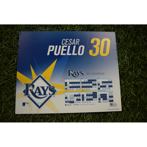 2017 Team-Issued Locker Tag - Cesar Puello