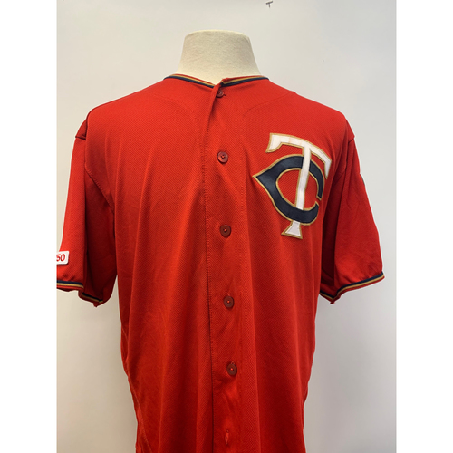 new concept 119b4 1dc3a Twins Auctions | 2019 Game Used #26 Max Kepler Jersey