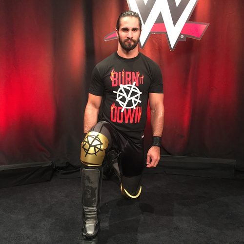 Photo of Seth Rollins WORN & SIGNED Gold Kneepads (Connors Cure - 09/18/17)