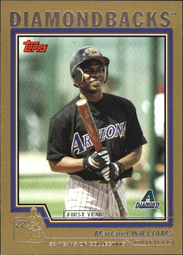 Photo of 2004 Topps Traded Gold #T132 Marland Williams FY