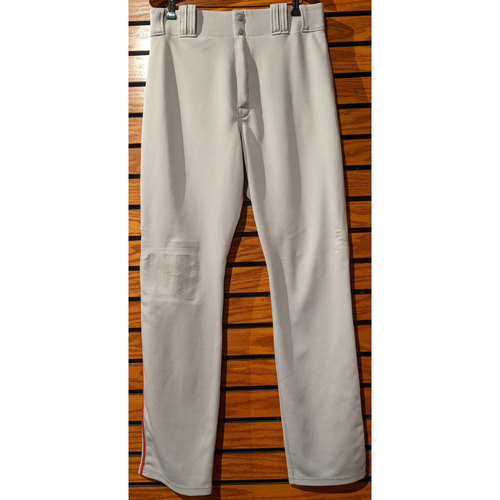 Photo of Dustin Pedroia Team Issued Road Gray Pants