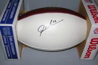 NFL - JODY WEBB SIGNED PANEL BALL