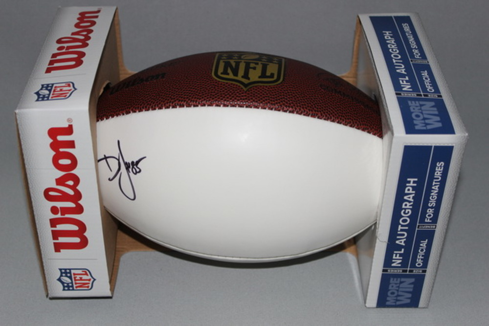 Dolphins - Dominique Jones signed panel ball