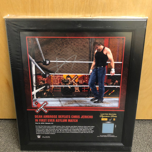 Photo of Dean Ambrose SIGNED Extreme Rules 2016 Signature Series Ring Canvas Plaque (#4 of 5)