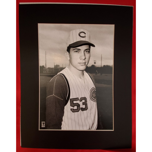 Photo of Matted Johnny Bench #53 - 11x14