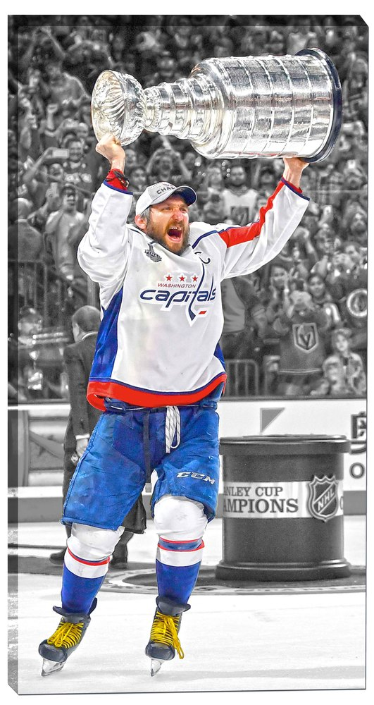 Alex Ovechkin 14x28 Canvas Capitals 2018 Stanley Cup Celebration