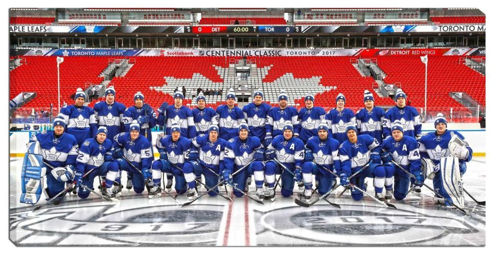 Toronto Maple Leafs - 14x28