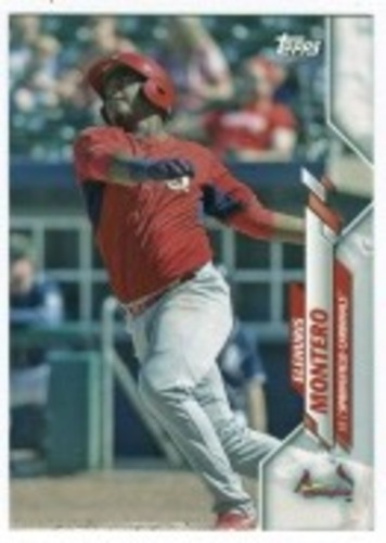 Photo of 2020 Topps Pro Debut #PD6 Elehuris Montero