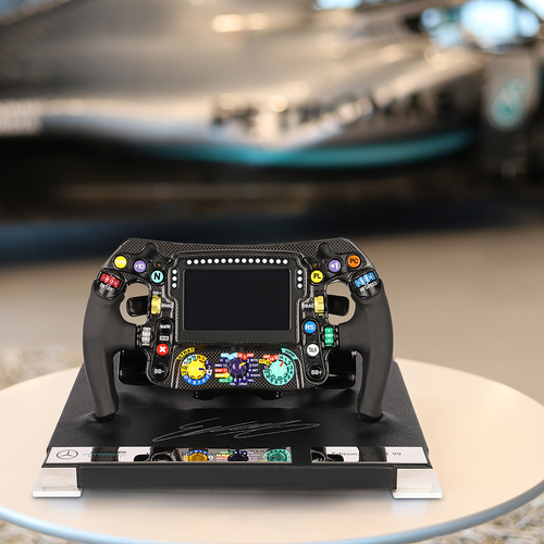 Photo of Esteban Gutierrez 2019 Signed W10 Mercedes-AMG Petronas Formula One Team Stee...