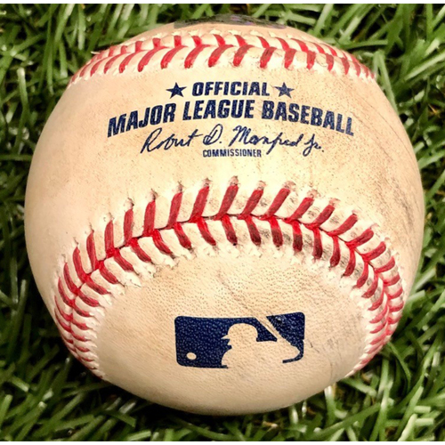 Photo of Rays Baseball Foundation: Game Used Home Run Baseball - Mike Ford - August 8, 2020 v NYY