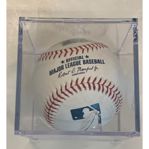 Game-Used Baseball: Jackie Bradley Strike Out Swinging