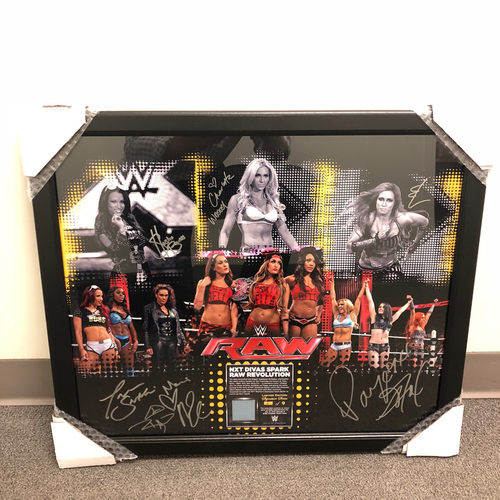 Photo of 2015 NXT Women's Revolution SIGNED Ring Canvas & Photo Collage Plaque
