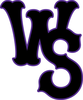 Winston-Salem Dash logo